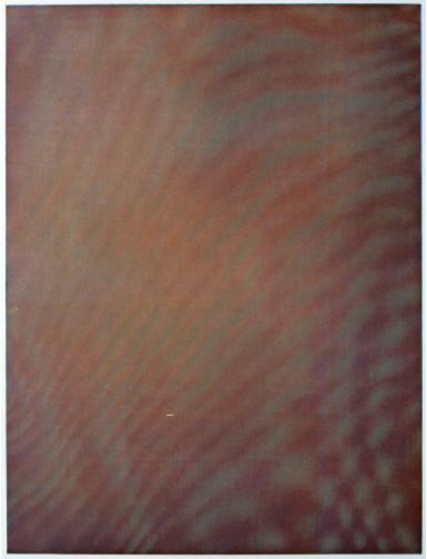 Mesh Moire I by Tauba Auerbach, 2012.