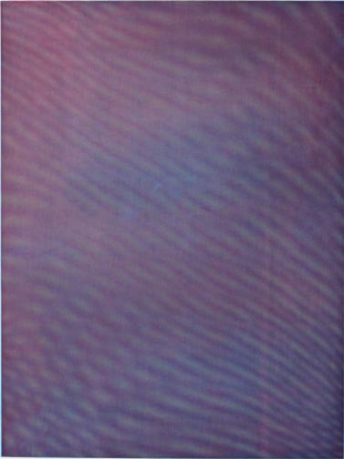 Mesh Moire IV by Tauba Auerbach, 2012.