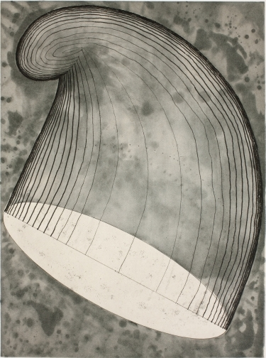 "Phrygian by Martin Puryear. 35"" x 28"" color softground etching with spitbite aquatint, aquatint and drypoint, 2012."